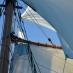 Blick in die Masten 4